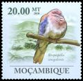 Cl: Laughing Dove (Streptopelia senegalensis) new (2010)  [7/2]