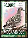 Cl: Common Bronzewing (Phaps chalcoptera)(Out of range and no other stamp)  new (2015)