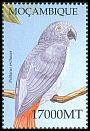 Cl: Grey Parrot (Psittacus erithacus)(Out of range)  SG 1618b1 (2002)