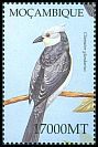 Cl: Great Spotted Cuckoo (Clamator glandarius) SG 1618a6 (2002)