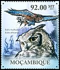 Mozambique <<Bufo-malhado>> new (2011)