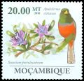 Mozambique new (2010)