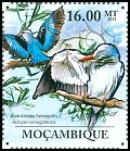 Cl: Woodland Kingfisher (Halcyon senegalensis) <<Guarda-rios Senegales>> (Repeat for this country)  new (2011)  [7/40]
