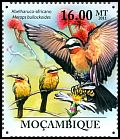 Cl: White-fronted Bee-eater (Merops bullockoides) <<Abelharuco-africano>>  new (2011)  [7/38]