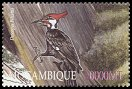 Cl: Pileated Woodpecker (Dryocopus pileatus)(Out of range)  SG 1638a3 (2002)  [5/58]