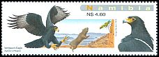 Cl: Verreaux's Eagle (Aquila verreauxii) SG 1120 (2009)