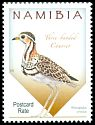 Cl: Three-banded Courser (Rhinoptilus cinctus) SG 1276 (2015)