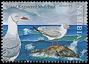 Cl: Grey-headed Gull (Larus cirrocephalus) SG 1023 (2006)  [5/20] I have 2 spare [2/10]