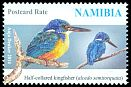 Cl: Half-collared Kingfisher (Alcedo semitorquata) SG 1253 (2014)