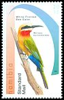 Cl: White-fronted Bee-eater (Merops bullockoides) new (2015)  [9/32]