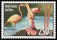 Cl: Caribbean Flamingo (Phoenicopterus ruber) <<Flamingo>> (Repeat for this country)  SG 1638 (2004)  [3/27]