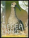 Cl: Eurasian Curlew (Numenius arquata) <<Wulp>> (Repeat for this country)  new (2020)  [12/9]