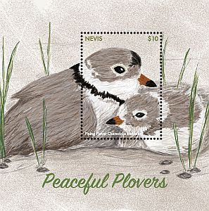 Cl: Piping Plover (Charadrius melodus)(I do not have this stamp)  new (2017)