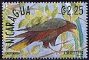 Cl: Chestnut-headed Oropendola (Psarocolius wagleri) SG 3135 (1991)  [1/9]