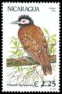 Cl: Black-spotted Bare-eye (Phlegopsis nigromaculata)(Out of range and no other stamp)  SG 3181 (1991)