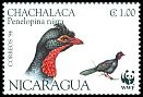 Cl: Highland Guan (Penelopina nigra)(Repeat for this country)  SG 3492 (1994)  I have 6 spare [1/54]
