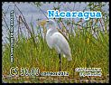 Cl: Great Egret (Ardea alba)(Repeat for this country)  new (2012)  [11/6]