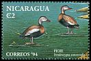 Cl: Black-bellied Whistling-Duck (Dendrocygna autumnalis) <<Piche>>  SG 3467 (1994)