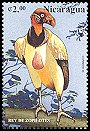 Cl: King Vulture (Sarcoramphus papa) <<Rey de Zopilotes>> (not catalogued)  (1999)  [5/26]