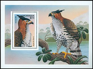 Cl: Ornate Hawk-Eagle (Spizaetus ornatus) SG 3523c (1995)