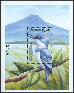 Cl: Belted Kingfisher (Ceryle alcyon)(Repeat for this country)  SG 3955b (2000)