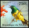 Cl: Pygmy Sunbird (Hedydipna platura)(I do not have this stamp) (not catalogued)  (2013)