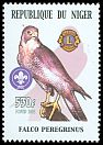 Cl: Peregrine Falcon (Falco peregrinus)(not catalogued)  (2002)