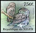 Cl: Pearl-spotted Owlet (Glaucidium perlatum)(I do not have this stamp) (not catalogued)  (2013)