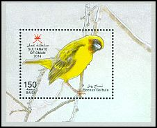 Cl: Rueppell's Weaver (Ploceus galbula)(Endemic or near-endemic)  new (2014)