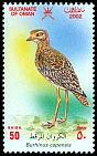 Cl: Spotted Thick-knee (Burhinus capensis) SG 585 (2002)