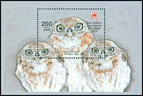 Cl: Arabian Scops-Owl (Otus pamelae) new (2014)