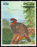 Cl: Western Tragopan (Tragopan melanocephalus)(Repeat for this country)  SG 572 (1981)