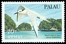 Cl: Black-naped Tern (Sterna sumatrana) SG 55 (1984) 50