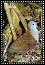 Cl: Palau Ground-Dove (Gallicolumba canifrons)(Endemic or near-endemic)  SG 2270 (2007)  [4/22]