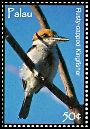 Cl: Micronesian Kingfisher (Todirhamphus cinnamominus)(Endemic or near-endemic)  SG 2273 (2007)  [4/22]