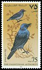Cl: Blue Rock-Thrush (Monticola solitarius) SG 92 (1997) 20