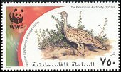 Cl: Macqueen's Bustard (Chlamydotis macqueenii)(Repeat for this country)  SG 206 (2001)
