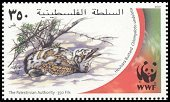 Cl: Macqueen's Bustard (Chlamydotis macqueenii)(Repeat for this country)  SG 205 (2001)