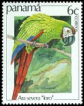 Cl: Chestnut-fronted Macaw (Ara severa) SG 1289 (1981) 25