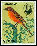 Cl: Hepatic Tanager (Piranga flava) <<Fueguero>> (not catalogued)  (1985) 0