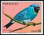 Cl: Swallow Tanager (Tersina viridis)(not catalogued)  (1973) 0