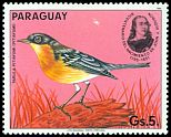 Cl: Tropical Parula (Parula pitiayumi)(not catalogued)  (1985) 0