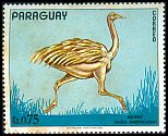 Cl: Greater Rhea (Rhea americana) <<&Ntilde;and&uacute;>> (Repeat for this country) (not catalogued)  (1972)