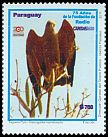 Cl: Savanna Hawk (Buteogallus meridionalis) <<Taguato Pyta>> (I do not have this stamp)  SG 1883 (2011)  [7/49]