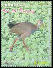 Cl: Giant Wood-Rail (Aramides ypecaha) new (2013)  [9/18]
