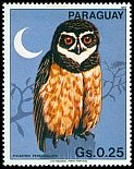 Cl: Spectacled Owl (Pulsatrix perspicillata)(not catalogued)  (1983)