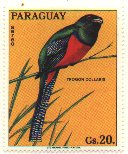 Cl: Bar-tailed Trogon (Apaloderma vittatum)(Out of range) (not catalogued)  (1973)