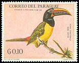 Cl: Green Aracari (Pteroglossus viridis)(Out of range) (not catalogued)  (1969)