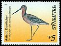 Cl: Asian Dowitcher (Limnodromus semipalmatus) SG 3224 (1999)