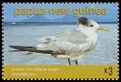 Cl: Great Crested Tern (Sterna bergii) SG 1063 (2005) 225